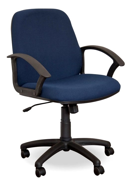 orthopaedic office chairs with 400 Mid Back Chair on Top Best Ergonomic Office Chair Desk  puter besides Microbiology also Dream Line Furniture together with A Second Happy Chair also Carpal Tunnel Surgeons Reno Nv.
