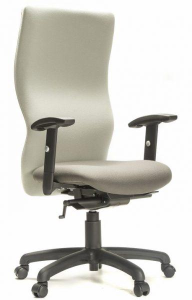 Ergo 360 Delux Chair