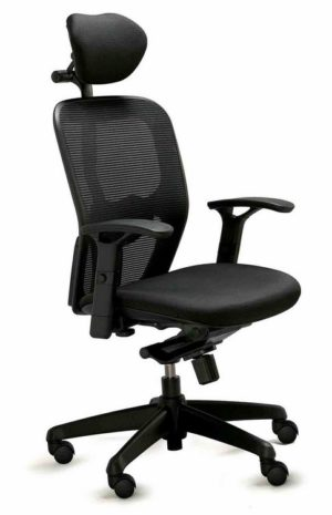 Ergo 4000 Executive Chair