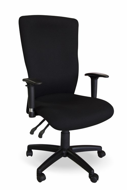 Ergonomic Office Chair With Height Adjule Armrests