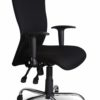 Ergonomic chair with chrome base