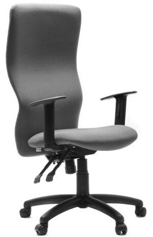 Ergonomic High Back Chair