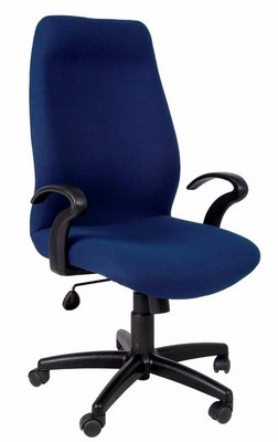 Fabulous Ergonomic Chairs Office Chairs For Sale In Johannesburg Download Free Architecture Designs Scobabritishbridgeorg