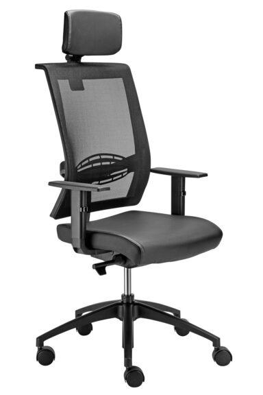 Executive Ergonomic Chair