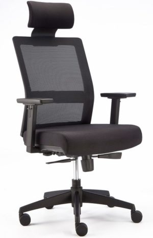 Executive mesh back ergonomic chair