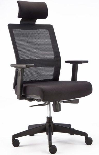 Executive mesh back ergonomic chair