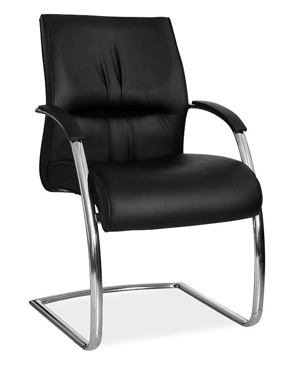 Strange Salvador Visitor Sleigh Spiritservingveterans Wood Chair Design Ideas Spiritservingveteransorg