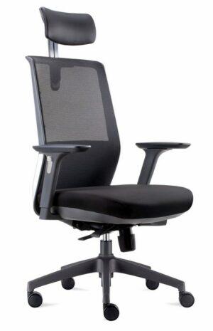 Ergonomic mesh back chair