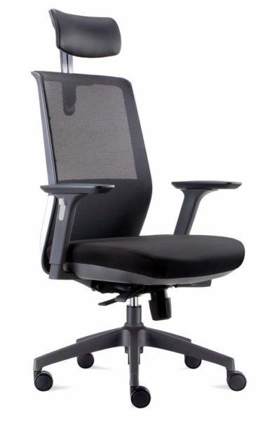Ergonomic mesh back chair