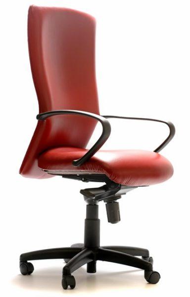 High Back Ergonomic Office Chair