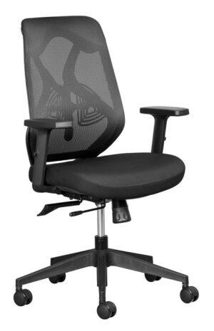 Mesh Back Ergonomic Chair