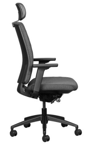Adjustable Ergo Chair